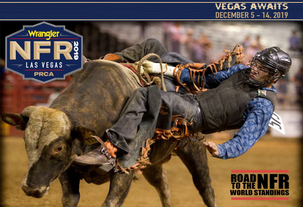 NFR 2019 Start Time, TV schedule